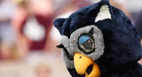 The Rice Owls mascot against the Texas A&M Aggies during the second half at Kyle Field. Texas A&M won 52-31. Mandatory Credit: Thomas Campbell-USA TODAY Sports