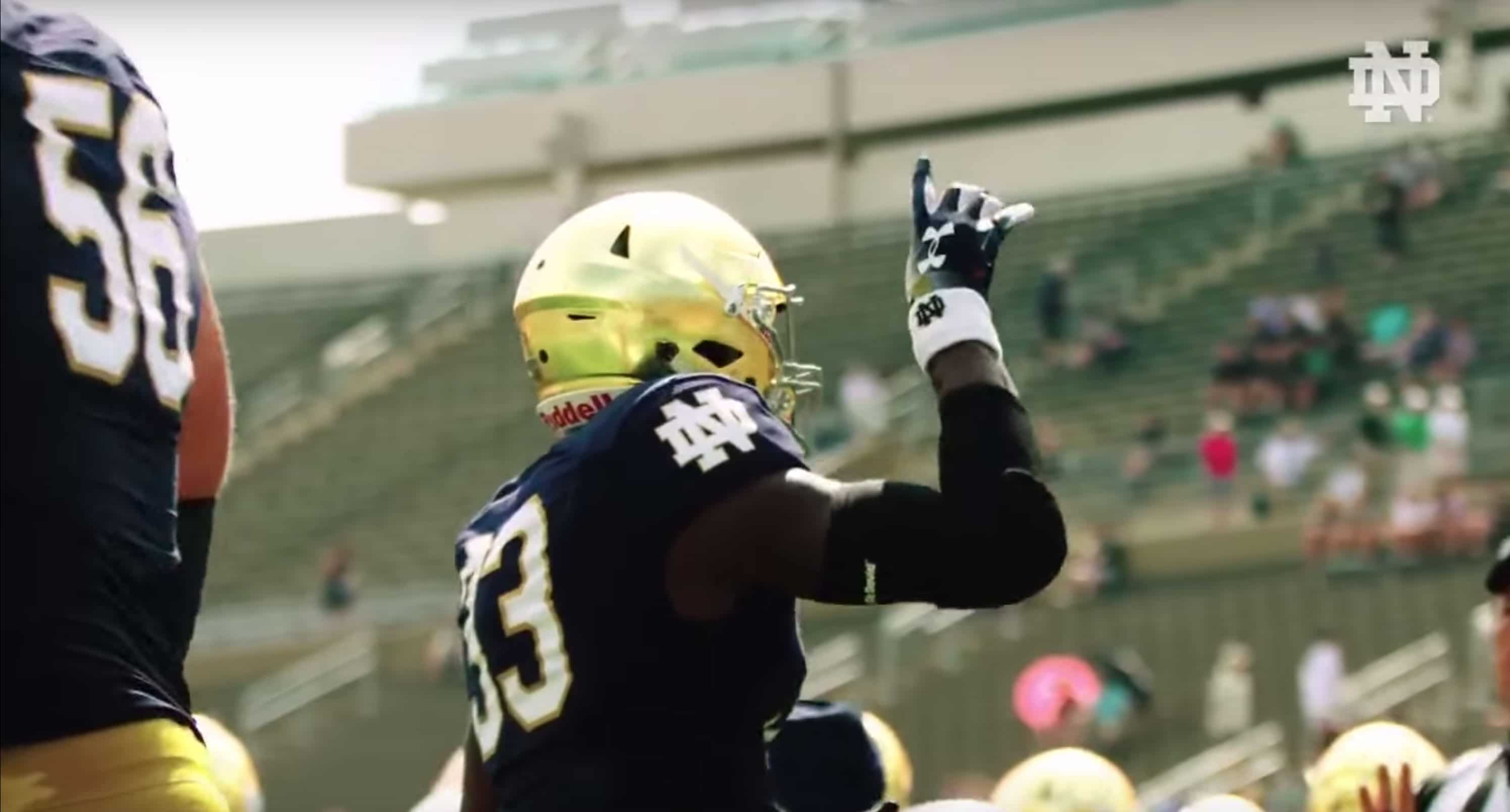 Notre-dame-new-gold-highlights
